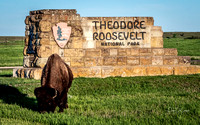 Theodore Roosevelt National Park May 2018