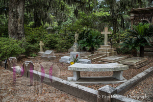 Johnny Mercer family plot